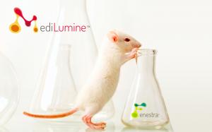 medilumine-mouse