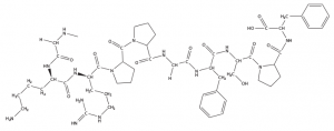 B1R Agonist Structure